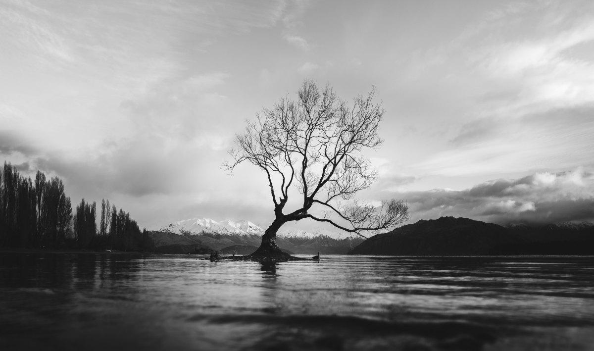 Stigma: The Thorn in MySide