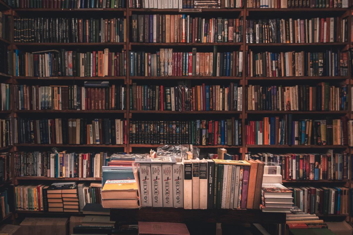 The Bipolar Writer: AMemoir